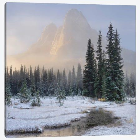 Bell Mountain North Cascades II Canvas Print #MJC117} by Alan Majchrowicz Art Print