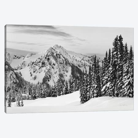 Tatoosh Range BW Canvas Print #MJC126} by Alan Majchrowicz Canvas Artwork