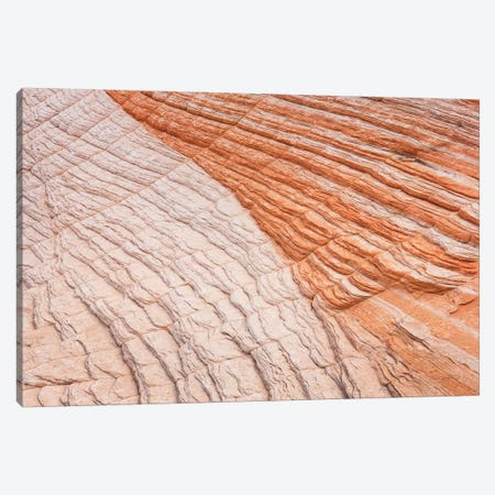 Coyote Buttes VI Canvas Print #MJC37} by Alan Majchrowicz Canvas Print
