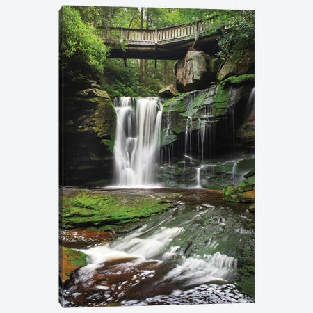 Elakala Falls West I Canvas Print #MJC3} by Alan Majchrowicz Canvas Print