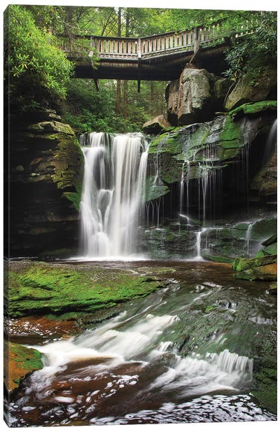Elakala Falls West I Canvas Art Print