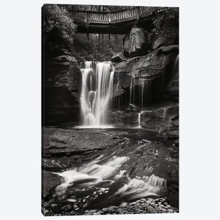Elakala Falls West I in Black & White Canvas Print #MJC4} by Alan Majchrowicz Canvas Artwork