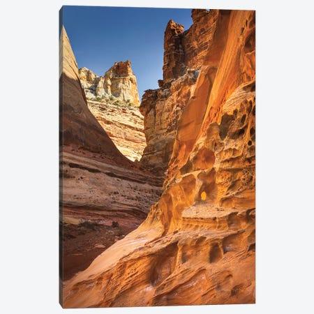 Crack Canyon II Canvas Print #MJC54} by Alan Majchrowicz Canvas Print