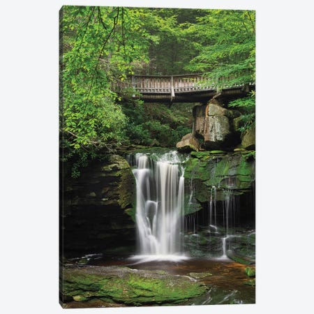 Elakala Falls West II Canvas Print #MJC5} by Alan Majchrowicz Canvas Artwork