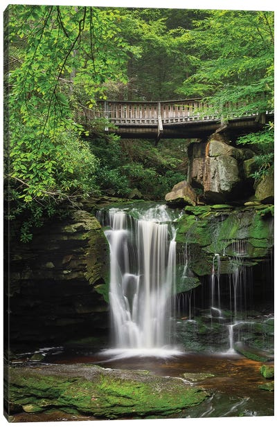 Elakala Falls West II Canvas Art Print