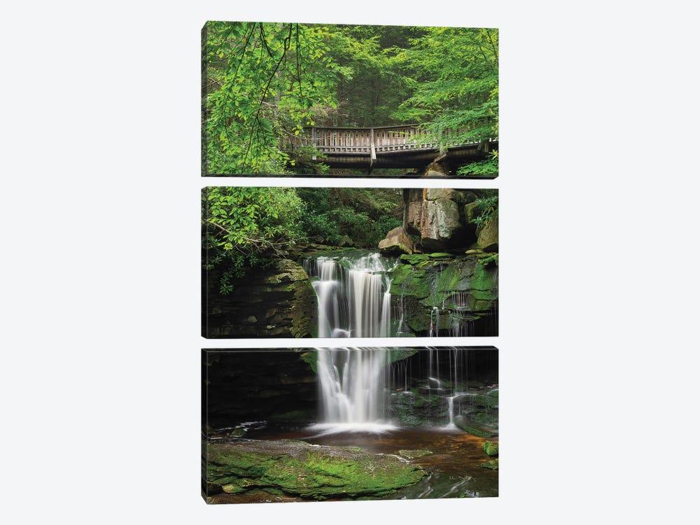 Elakala Falls West II by Alan Majchrowicz 3-piece Canvas Wall Art