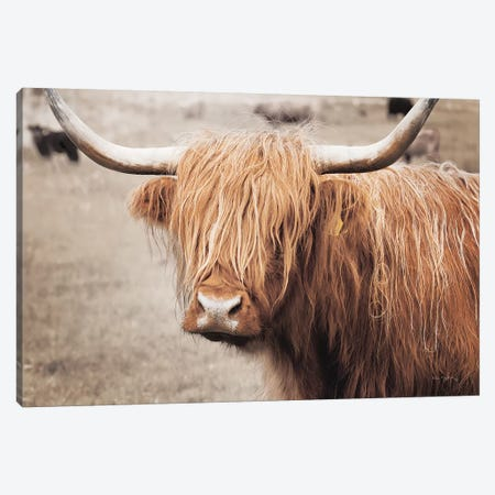 Scottish Highland Cattle I Neutral Canvas Print #MJC65} by Alan Majchrowicz Canvas Artwork