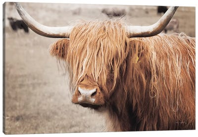 Scottish Highland Cattle I Neutral Canvas Art Print