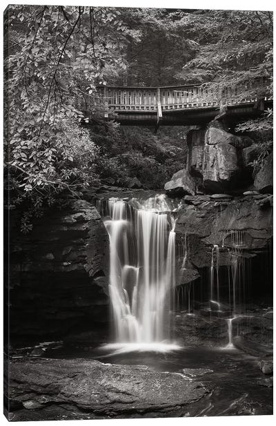 Elakala Falls West II in Black & White Canvas Art Print