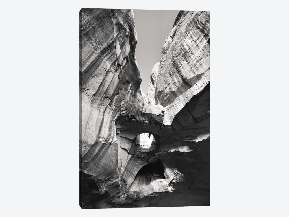 Neon Canyon I BW 1-piece Canvas Artwork