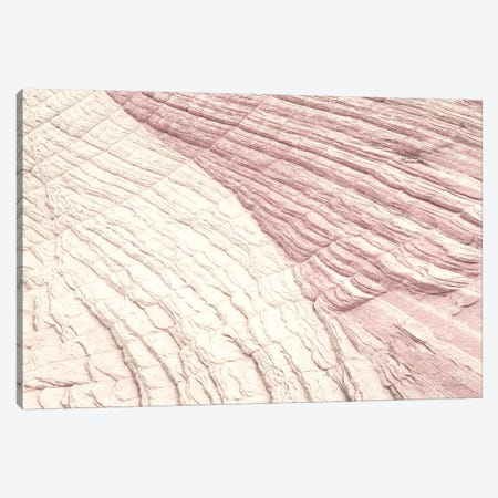 Coyote Buttes VI Blush Canvas Print #MJC84} by Alan Majchrowicz Canvas Artwork
