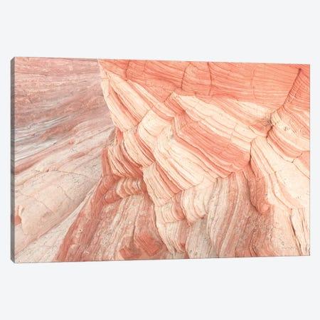 Coyote Buttes VII Blush Canvas Print #MJC85} by Alan Majchrowicz Canvas Art