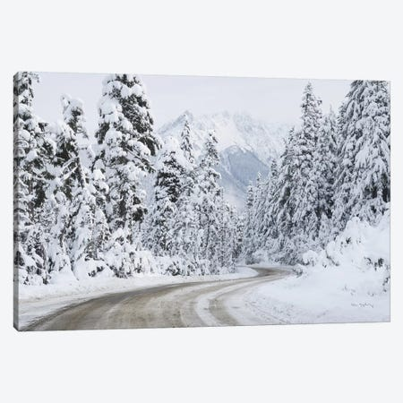 Mount Baker Highway I Canvas Print #MJC88} by Alan Majchrowicz Canvas Print