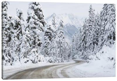 Mount Baker Highway I Canvas Art Print