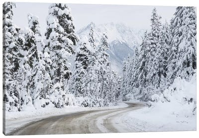 Mount Baker Highway I Canvas Art Print
