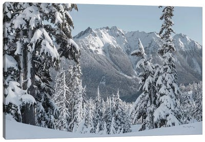 Nooksack Ridge in Winter Canvas Art Print