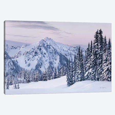 Tatoosh Range Canvas Print #MJC91} by Alan Majchrowicz Canvas Art