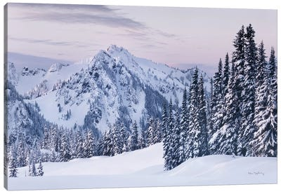 Tatoosh Range Canvas Art Print