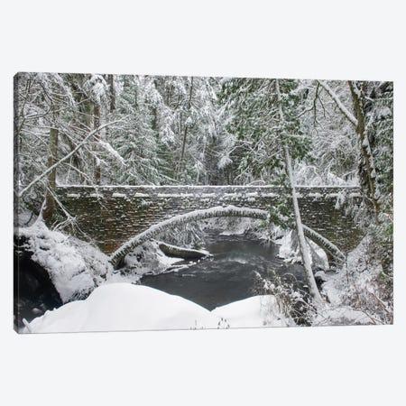 Whatcom Creek Bridge Canvas Print #MJC92} by Alan Majchrowicz Canvas Artwork