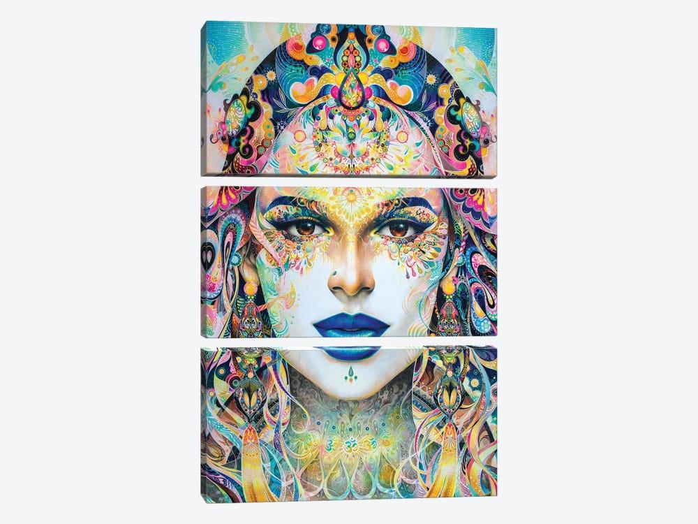 Shakti by Minjae Lee 3-piece Canvas Art