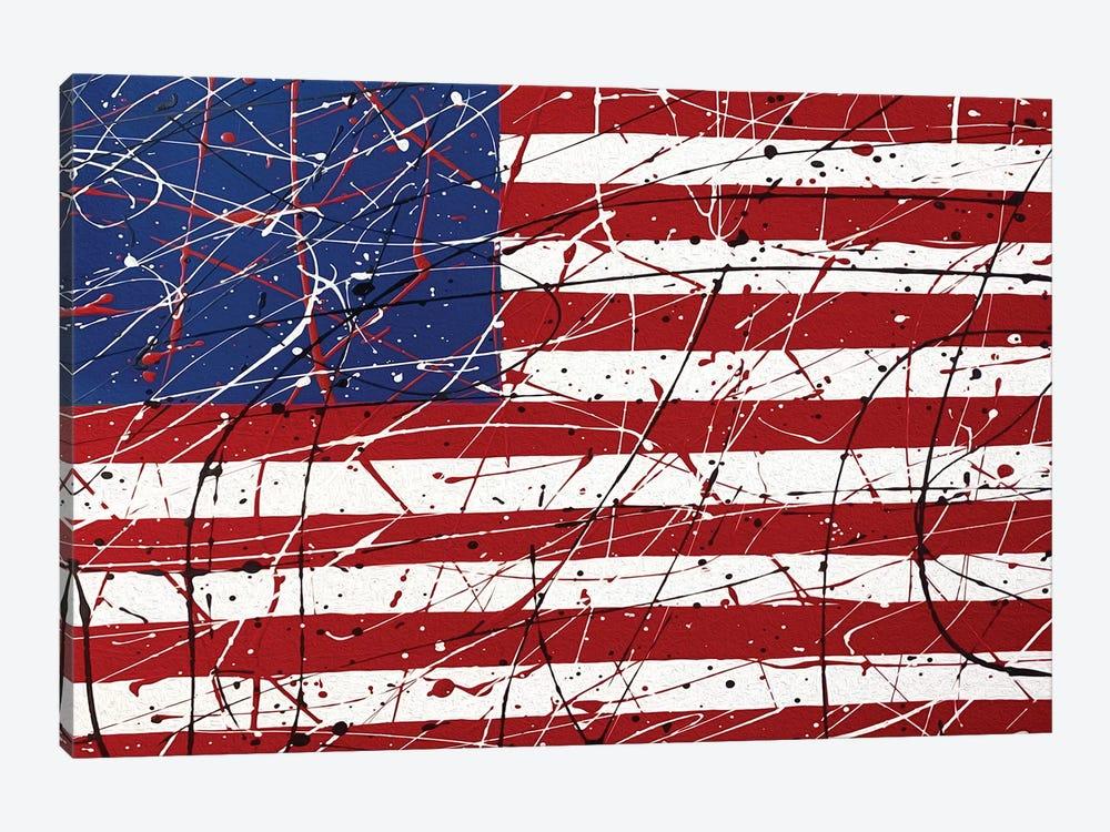 American Flag I by Martin James 1-piece Art Print