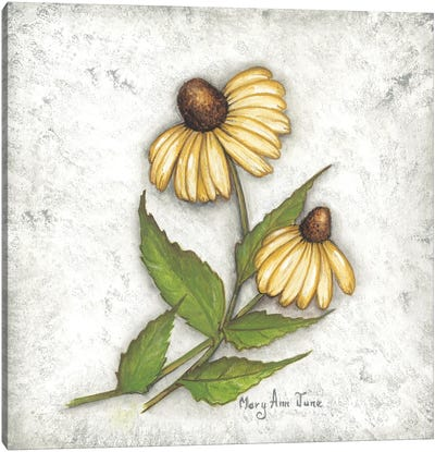 Yellow Coneflowers Canvas Art Print