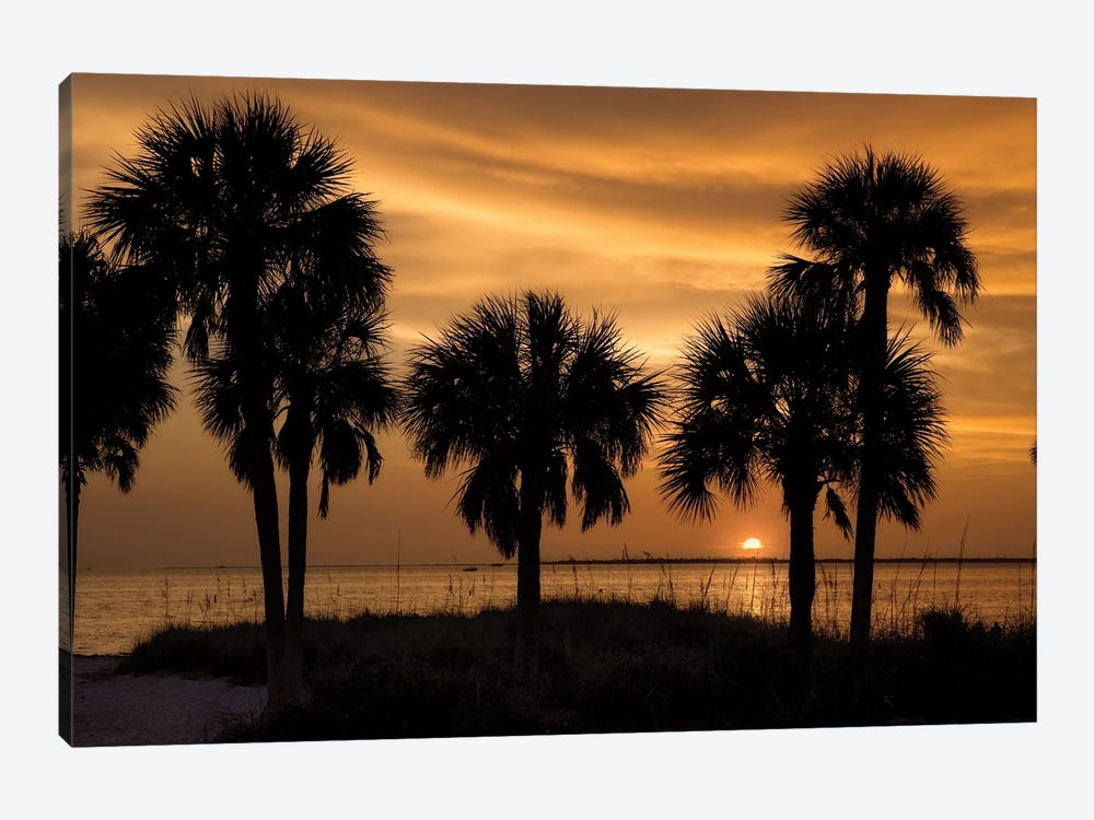 Tropical Park Sunset by Mike Jones 1-piece Art Print
