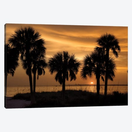 Tropical Park Sunset 3-Piece Canvas #MJO10} by Mike Jones Canvas Art