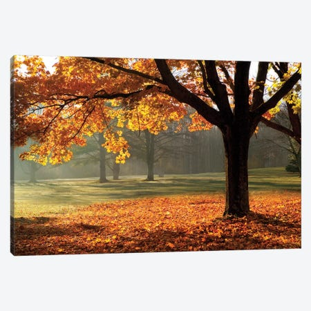 Autumn Canvas Print #MJO2} by Mike Jones Canvas Print