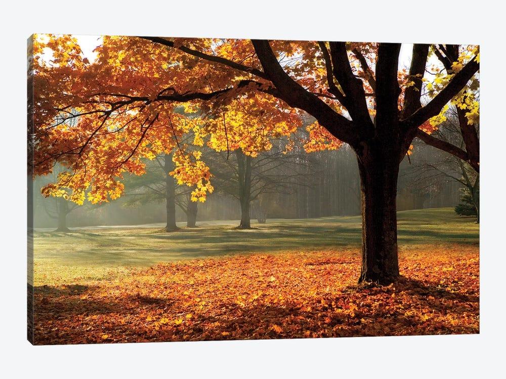 Autumn by Mike Jones 1-piece Canvas Print