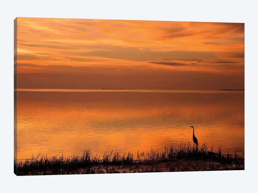 Crystal Beach Sunset by Mike Jones 1-piece Art Print