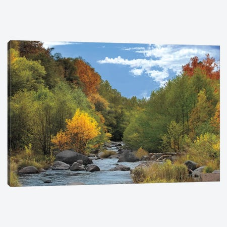 Near Perfect Day Canvas Print #MJO5} by Mike Jones Canvas Artwork