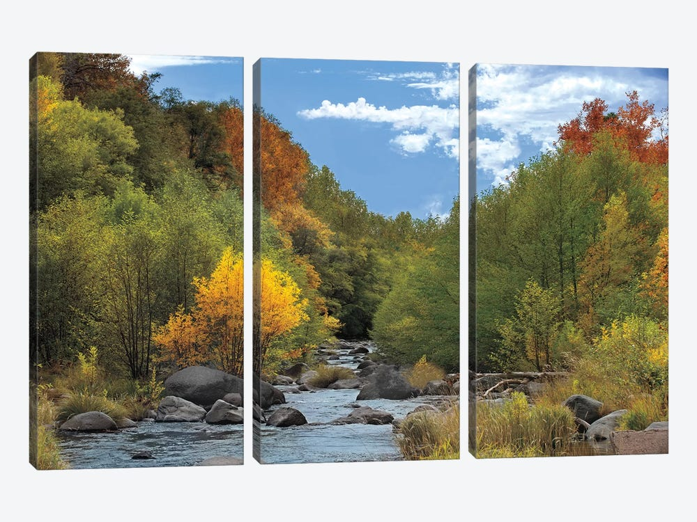 Near Perfect Day by Mike Jones 3-piece Canvas Artwork