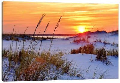 Seashore Sunset Canvas Art Print
