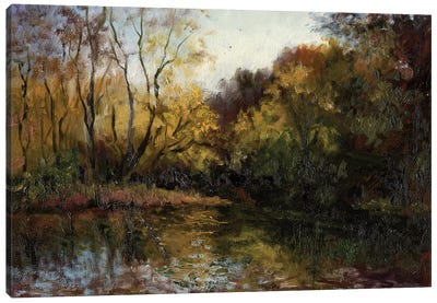 Bend In The River At Morrow Canvas Art Print