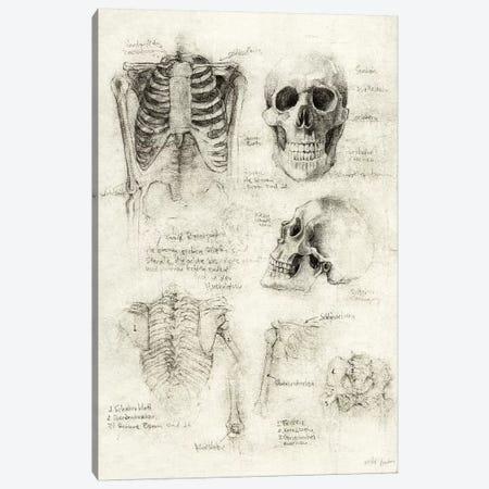 Skeleton Canvas Print #MKB123} by Mike Koubou Canvas Artwork