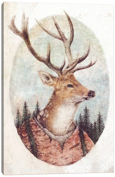 Wild Wanderer Canvas Art Print