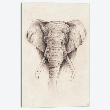 Elephant II Canvas Print #MKB20} by Mike Koubou Canvas Art Print