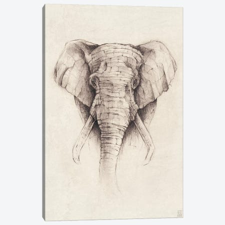 Elephant II Canvas Print #MKB20} by Mike Koubou Canvas Art Print