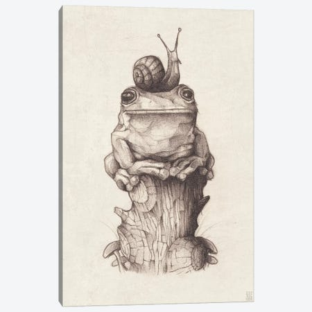 Frog And Snail I Canvas Print #MKB25} by Mike Koubou Canvas Wall Art