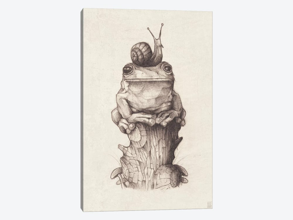 Frog And Snail I by Mike Koubou 1-piece Canvas Artwork