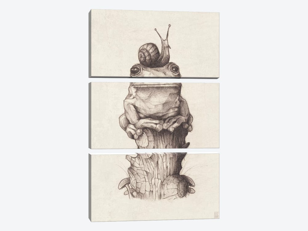 Frog And Snail I by Mike Koubou 3-piece Canvas Wall Art