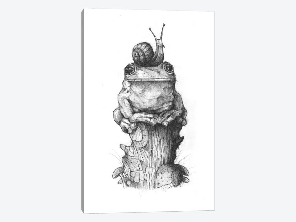 Frog And Snail II by Mike Koubou 1-piece Art Print