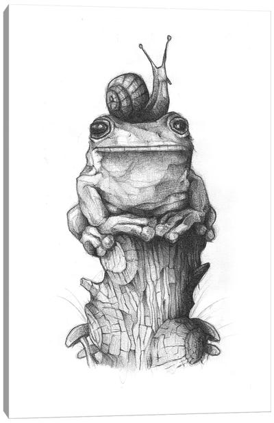 Frog And Snail II Canvas Art Print