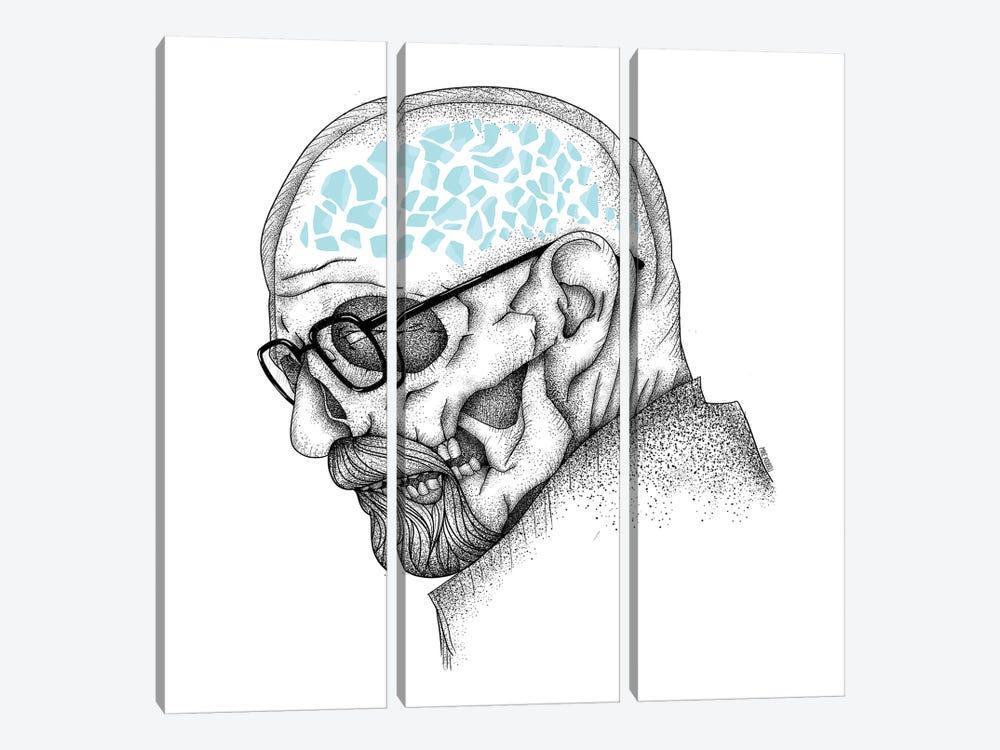 Heisenberg by Mike Koubou 3-piece Canvas Art