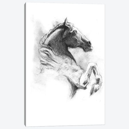 Horse IV Canvas Print #MKB34} by Mike Koubou Art Print