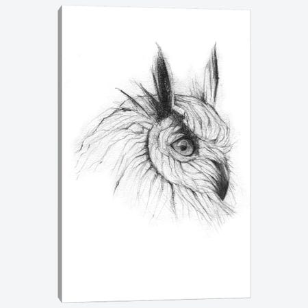 Owl III Canvas Print #MKB46} by Mike Koubou Canvas Artwork