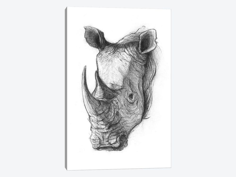 Rhinoceros V by Mike Koubou 1-piece Canvas Wall Art