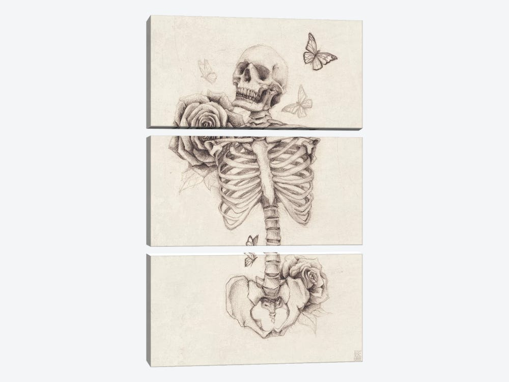 Skeleton And Roses I by Mike Koubou 3-piece Art Print