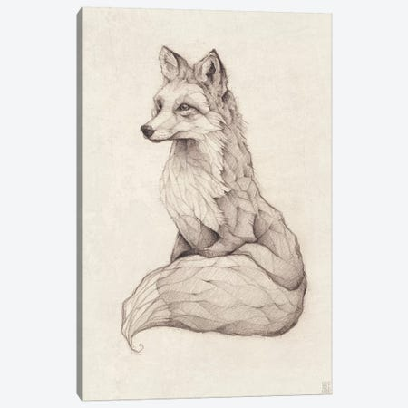 Vulpes Vulpes II Canvas Print #MKB73} by Mike Koubou Canvas Art